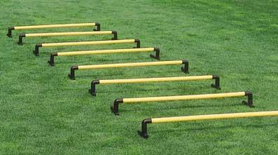 Einzelhürden 15 cm für das Saller Hürden System